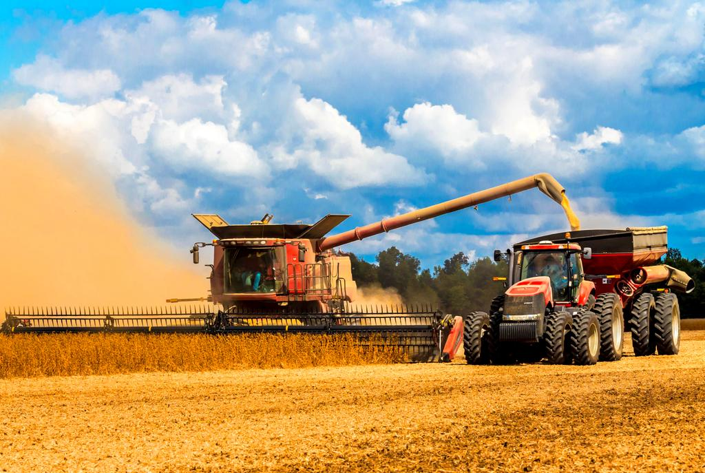 an analysis of agricultural cooperatives and grain export issues Ba barrier analysis  bap best agricultural continue to promote new solutions to agricultural finance issues by growth program – agribusiness and market.