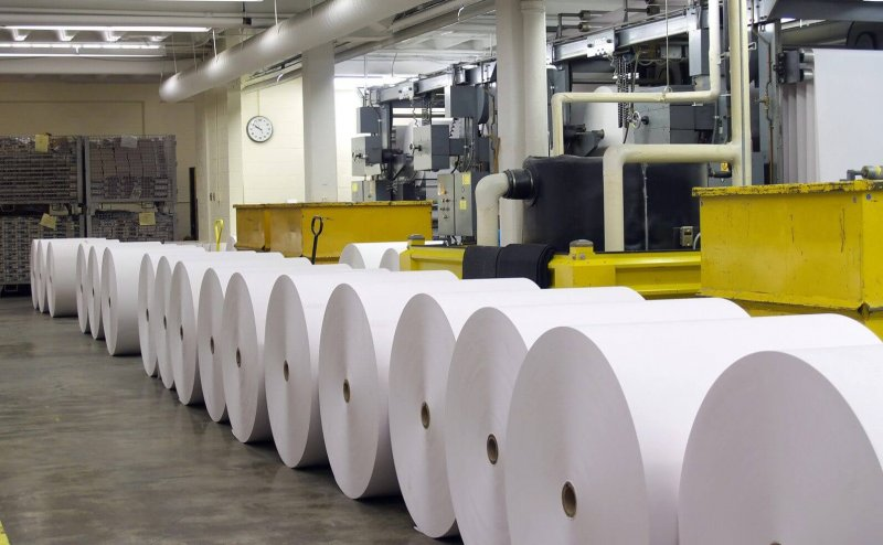 zhydachiv pulp and paper mill resumes work