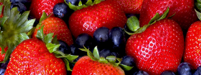 EXPORT OF FRUITS AND BERRIES FROM UKRAINE CONSTRAINED BY NON